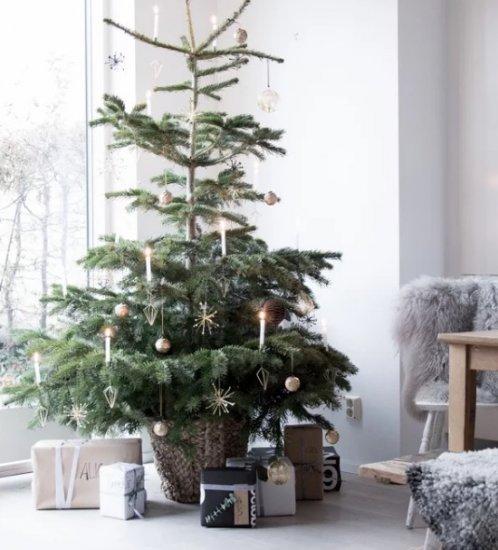 2. Décoration de Noël, y compris le sapin de Noël