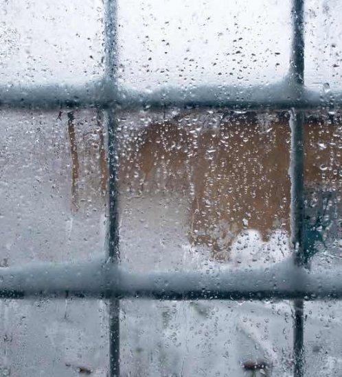 5.Protégez-vous du froid avec des stores isolants